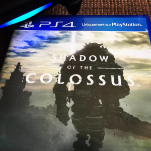 Jeu Shadow of The Colossus Playstation 4